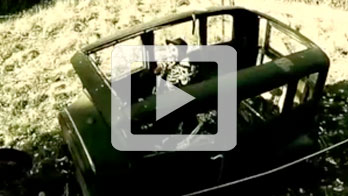 video-image2